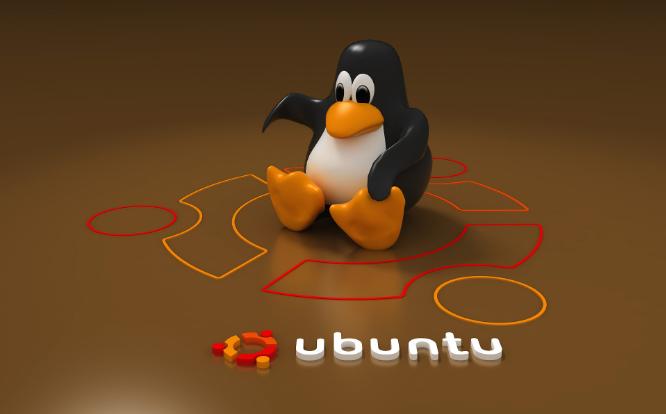 image_ubuntu_rija